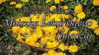 http://www.malinowynos.pl/ Wino z Mniszka Lekarskiego (10l): płatki...