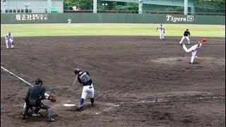 阪神タイガース戦。
