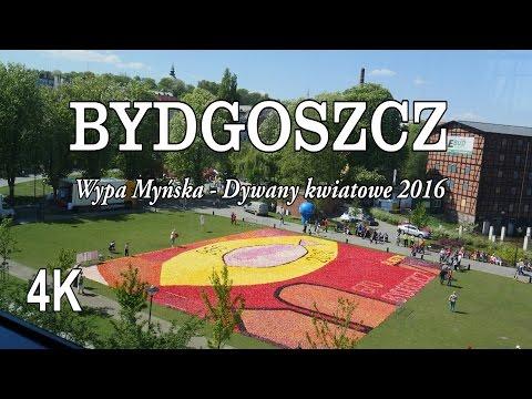Bydgoszcz Wyspa Młyńska Dywany Kwiatowe 2016 4k Youtube