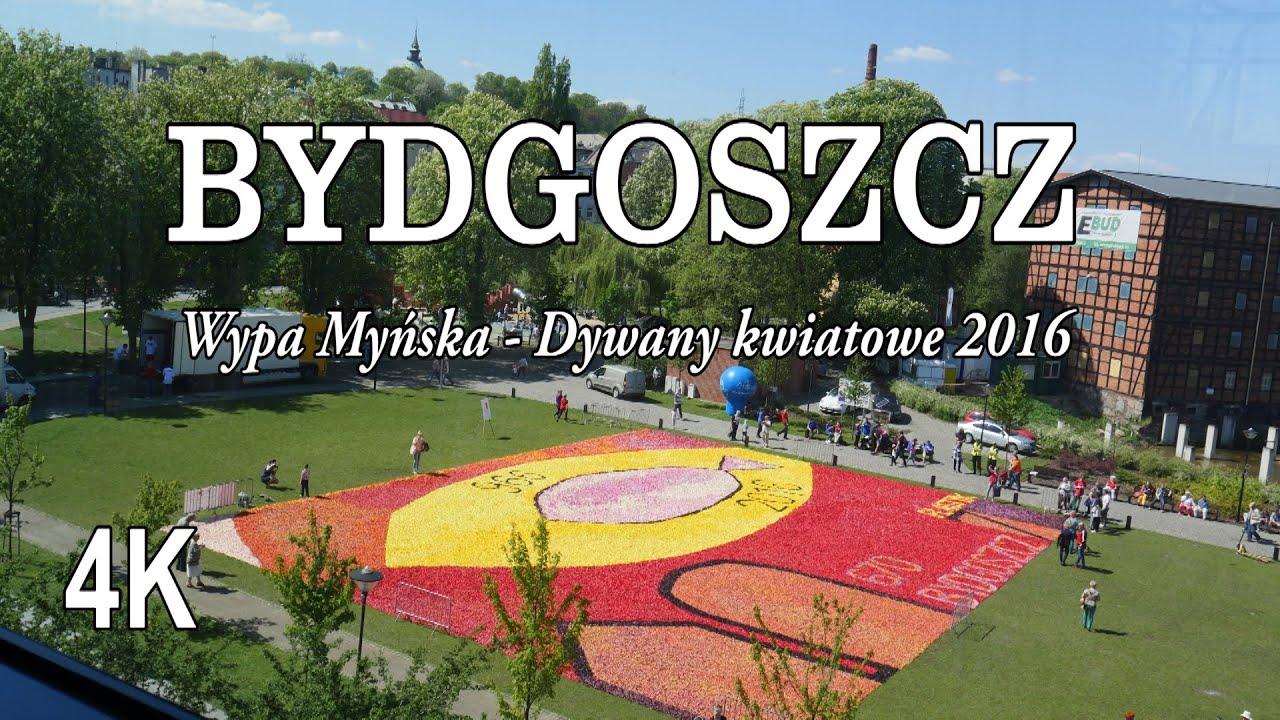 Bydgoszcz Wyspa Młyńska Dywany Kwiatowe 2016 4k