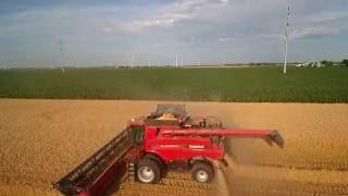 Bernia Family Farms, Inc. - Wheat Harvest 2016