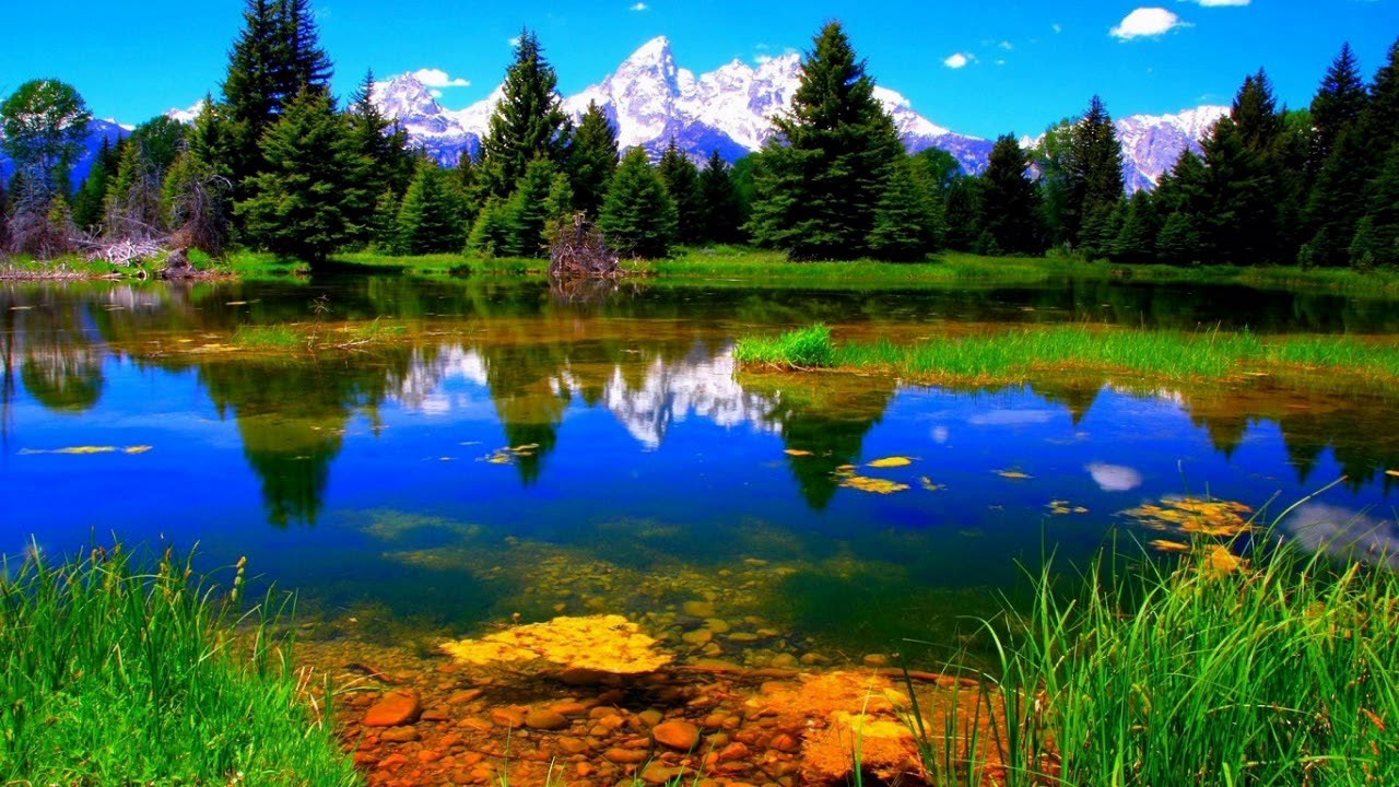 Beautiful Nature Wallpapers beautiful wallpapers