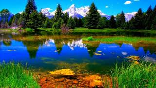 Beautiful Nature Wallpapers, Beautiful Wallpapers, Wallpaper Images, Beautiful Images Of Nature
