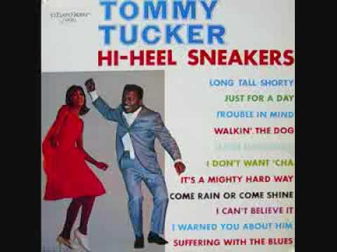 Tommy Tucker Hi Heel Sneakers