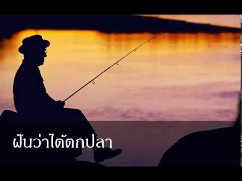 ฝันว่าได้ตกปลา หมายถึงอะไร (เลขเด็ด)