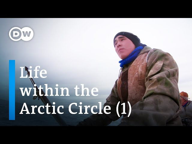 Tour of the Arctic (1/2) – from Svalbard to Siberia   DW Documentary