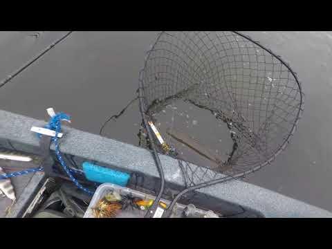 Iowa Musky Fishing