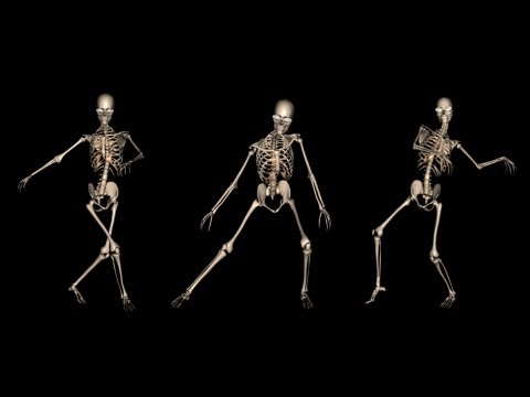 3d Moving Animation Wallpaper Download Funny Skeleton Dance I Royalty Free Clip Youtube