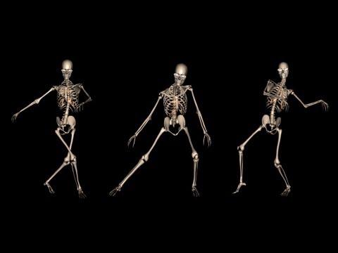 Moving Animation Wallpaper For Desktop Funny Skeleton Dance I Royalty Free Clip Youtube