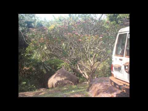 Dave Langford's 2015 Congo Trip