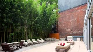 Bamboo Garden I Bamboo Garden Ideas