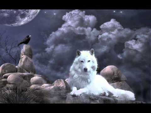Ignis Fatuu - Der Rabe und der Wolf  ( The Raven and the Wolf )