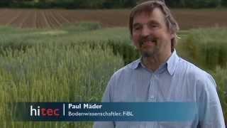 DOK-Versuch: Biologische und konventionelle Landwirtschaft im Langzeitvergleich