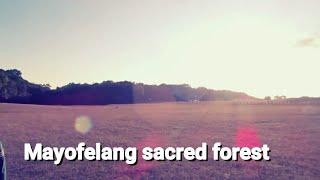 Shillong hidden secret s | jakrem |mawnsyngram | mawphlang/secret forest/ khasi heritage village