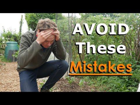 AVOID These 9 Beginner Gardening Mistakes   Beginner Gardening Tips
