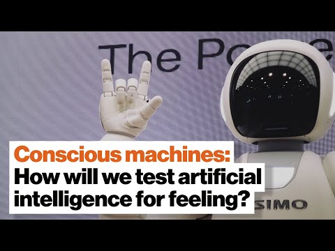 Conscious machines: How will we test artificial intelligence for feeling? | Dr. Susan Schneider