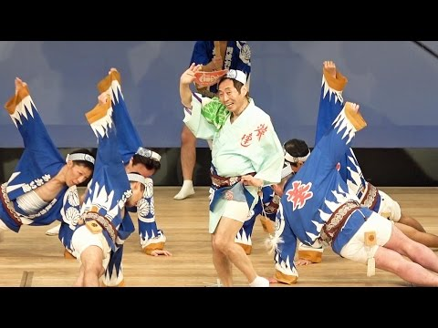 阿波おどり春舞台「葵連」はな・はる・フェスタ2017