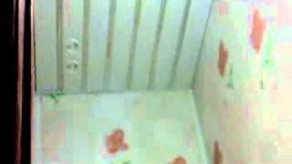 Ремонт туалета стеновыми панелями.wmv(Ремонт в туалете стеновыми панелями., 2012-01-01T08:23:49.000Z)