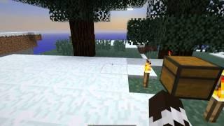 Tutorial: Minecraft Snapshot(s) installieren (!! Funktioniert auch für normale Jar's !!)