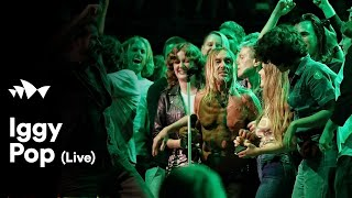 "Iggy Pop - ""No Fun"" 