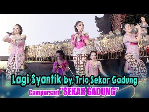 Lagi Syantik by  Trio Sekar Gadung