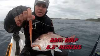 Велика риба на новий 2020 моря-Ду риби Pro з Ендрю Хілл