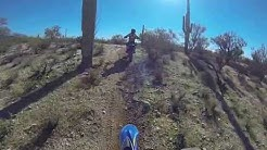 Marana Az Trail Riding