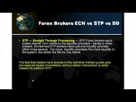 Forex Broker Types - MM,NDD,STP,ECN