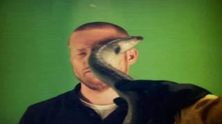 Zas, anguila en la k-ra