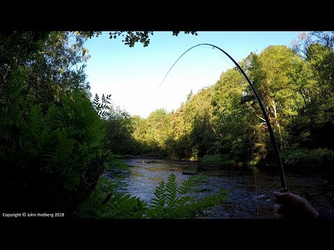 Fly Fishing Salmon/sea Trout Moments From The Mörrum River 2017. Part 1 - Spring And Summer Fishing.