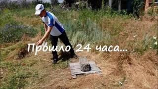 Приготовление курицы в яме