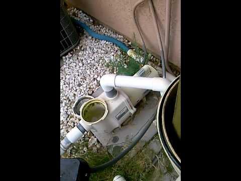 Limpiar alberca verde con yellow out doovi for Como limpiar el filtro de la piscina