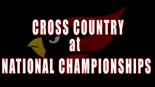 North Central College Men's and Women's Cross Country - DIII National Championships // 11.21.15