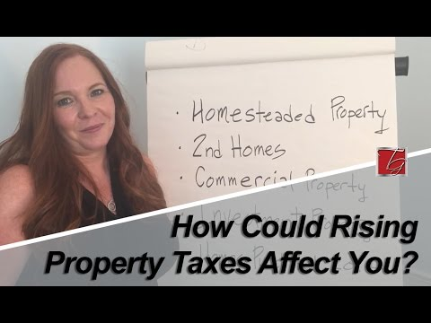 Palm Beach County Real Estate Agent: How Could Rising Property Taxes Affect You?