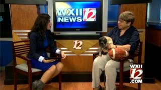 Pet Of The Week: Hamlet