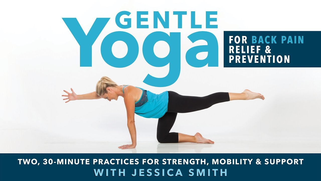Gentle Yoga For Back Pain Relief Prevention Available Now On Dvd And Digital Download Youtube
