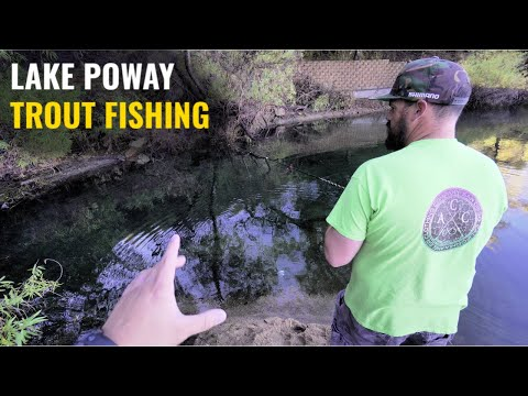 Trout Fishing Using Different Techniques (I Got Lake LIMITS)