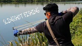 SLINGSHOT FISHING.ОХОТА НА САЗАНА С РОГАТКОЙ