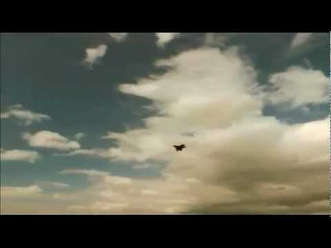 Mega Shark VS Giant Octopus (Octopus attacks plane) - YouTube