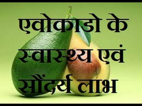 Avocado in hindi