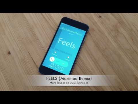Feels Ringtone (Calvin Harris Tribute Marimba Remix Ringtone) • Download For IPhone & Android