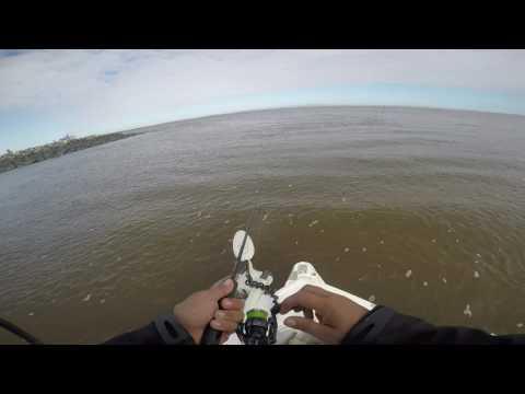 FISHING THE PORT OF BRISBANE 2/4/2017