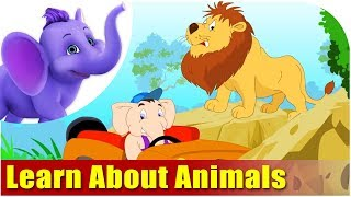 Let's Learn About Animals - Preschool Learning(Domestic or wild, big or small animals are great objects of interest. Introduce your kids to these friendly beasts. They'll thoroughly enjoy learning about animals!, 2013-09-30T18:30:01.000Z)