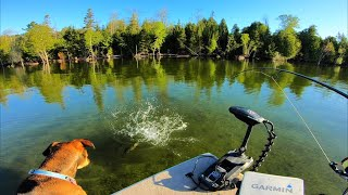 I DON'T WANT TO GO HOME! (Door County Clear Water Smallmouth Fishing)