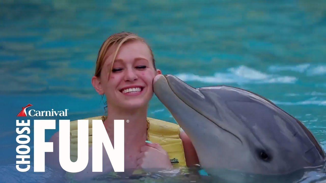 Dolphin Encounter With Unlimited Food & Drink In Cozumel