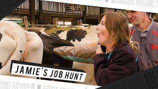 Jamie's Job Hunt (afl 6): op de boerderij met Nicolas Caeyers