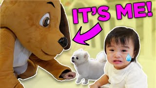 Surprising Baby Starley and Buncha in a Dog Costume