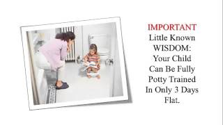 When To Potty Train A Girl, Potty Training At Night, Toddler Potty Training, Potty Training 3 Days