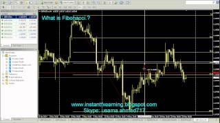 What is Fibonacci in Urdu | Forex Trading in Safe Hands