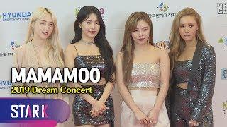 등장만으로도 난리가 난리나! 마마무 (MAMAMOO, 25th Dream Concert)